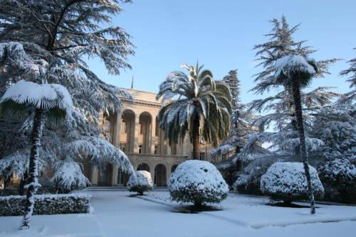Зимние каникулы в Абхазии