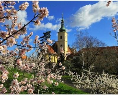 Прага в апреле-отдых цены и погода.