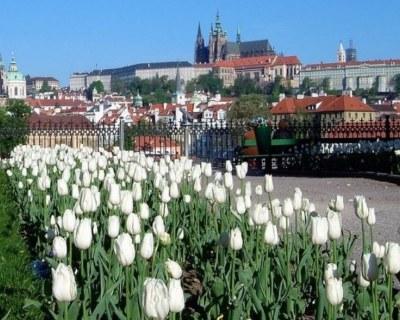 Прага в мае-отдых цены и погода.