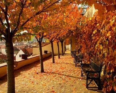 Прага в октябре-отдых цены и погода.