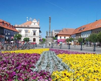 Чехия туры в Подебрады