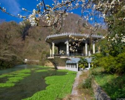 Абхазия весной — туры и путевки на отдых в Абхазии