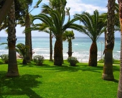 Отдых в Лимассоле (Кипр)