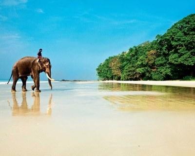 Лучшие пляжи Индии