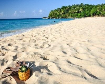Раннее бронирование туров в  Доминикану