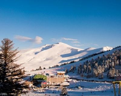 Отдых в Турции в феврале- цены на туры и путевки